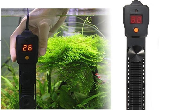 В аквариуме рекомендуется установить подогореватель, который будет автоматически нагревать воду до нужной температуры