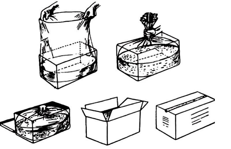 Наиболее удобный способ транспортировки рыбок - в стандартных полиэтиленовых пакетах