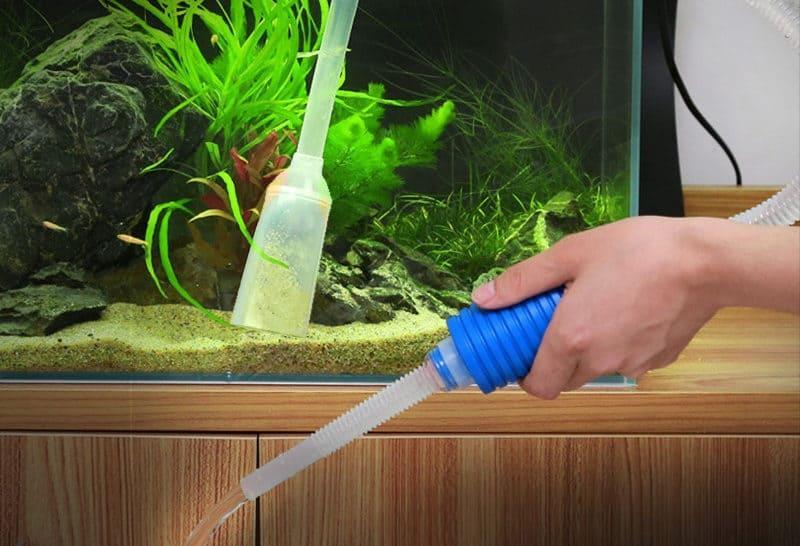 Менять воду по мере ее загрязнения
