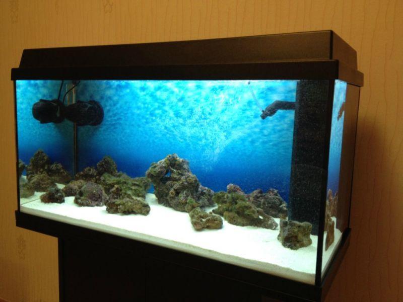 предложения картинки на аквариум песок уже