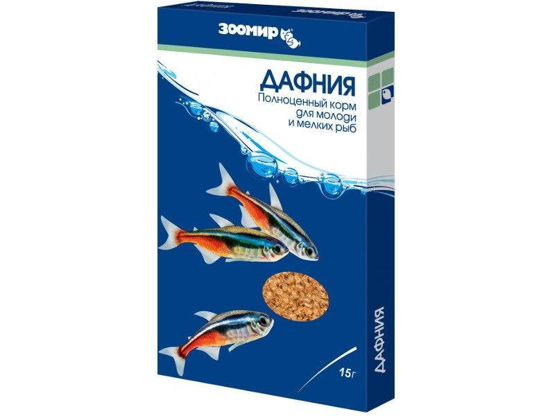 Дафнии для кормления рыбок