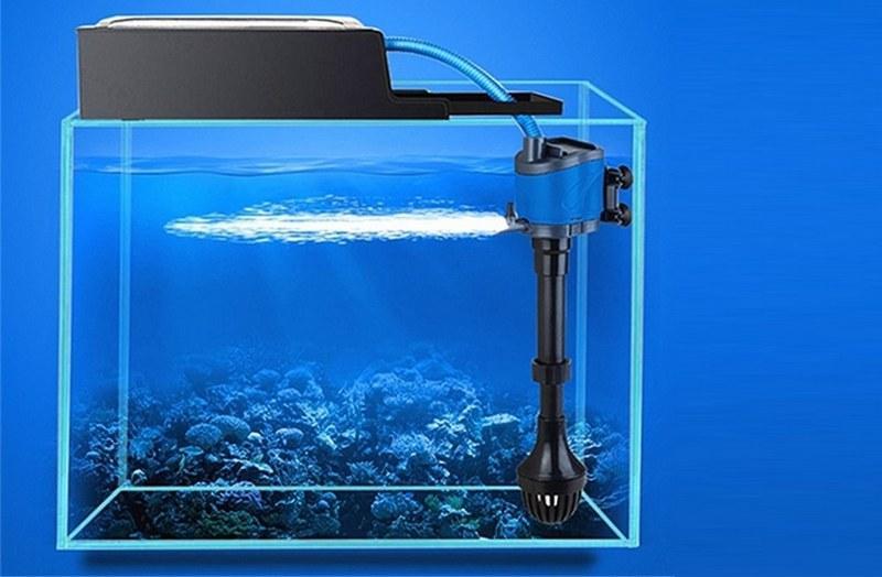 Фильтрация воды в аквариуме позволит поддерживать необходимый уровень чистоты в резервуаре