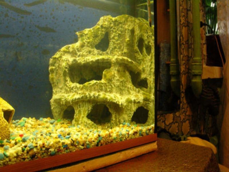 Грот из камней для аквариума своими руками   600x800