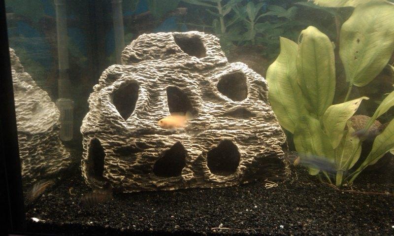 Гроты в аквариуме