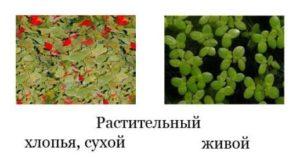 Растительный корм