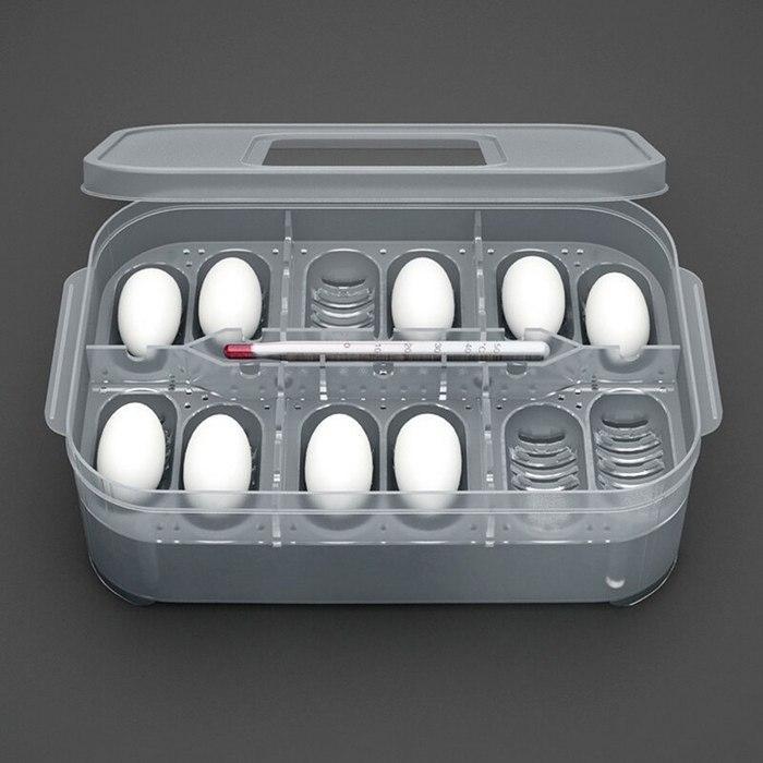 Инкубация яиц — самый ответственный момент при разведении эублефаров