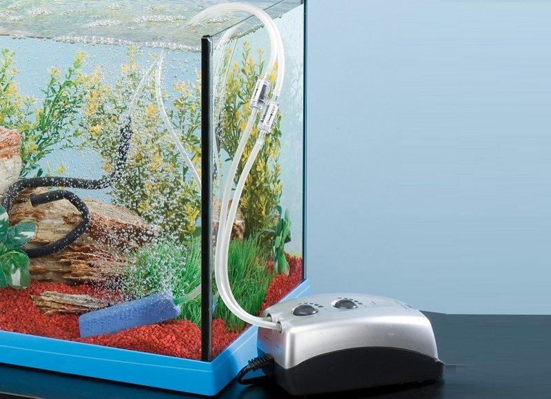 Аквариумный компрессор служит для обогащения воды кислородом
