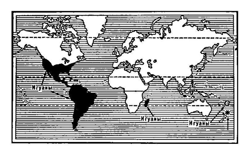 Области распространения семейства игуан