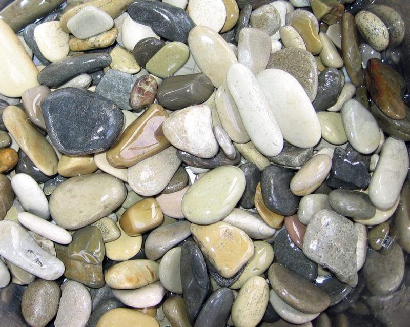 В качестве грунта для аквариума может использоваться крупная галька