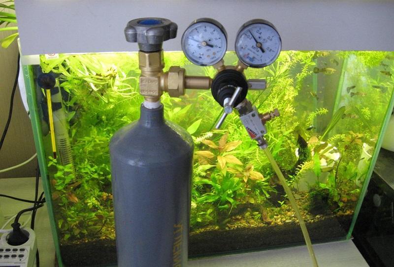 Насыщение воды углекислым газом улучшит процесс роста аквариумных растений