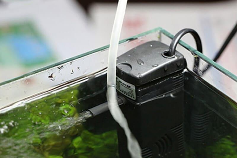 Компрессор необходим, чтобы эффективно растворять кислород в воде