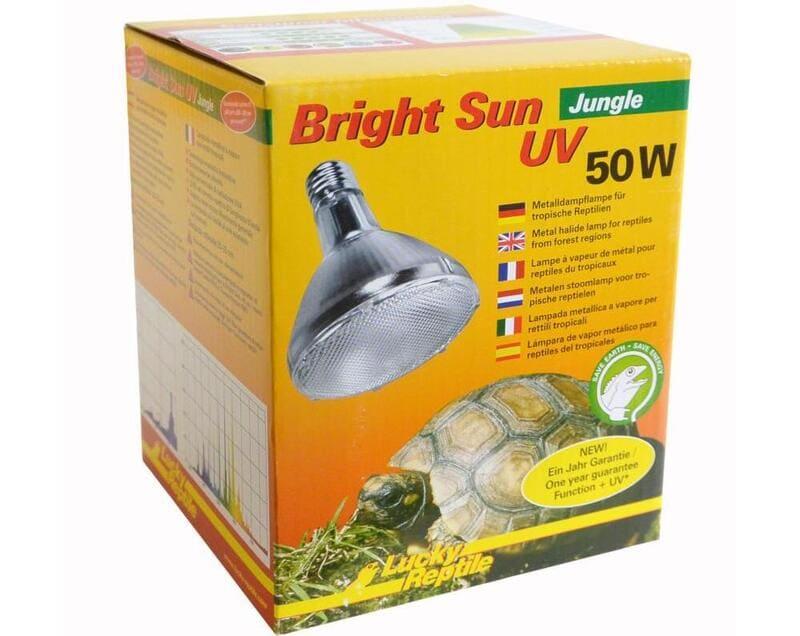 Важно покупать специализированные ультрафиолетовые лампы